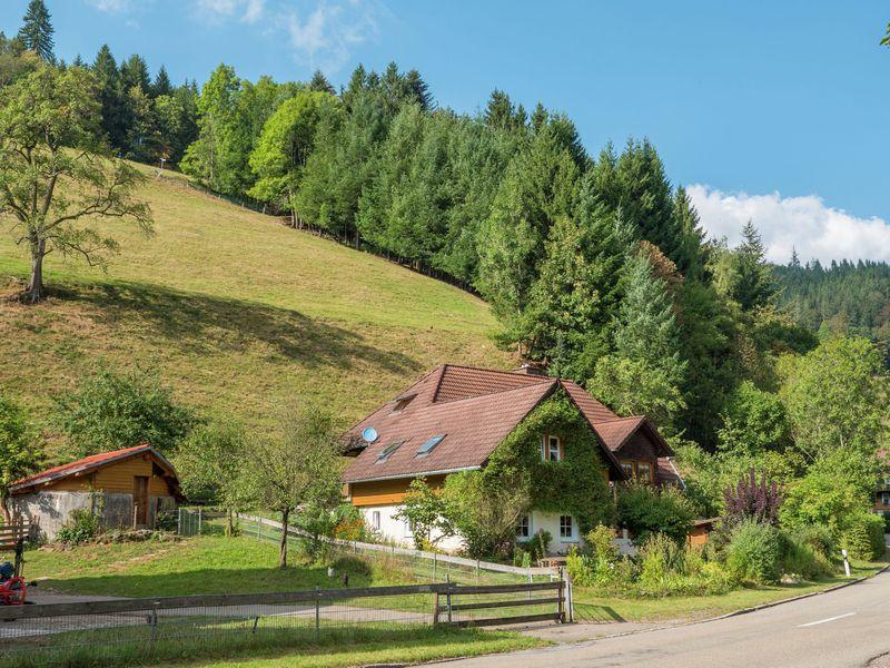 19341634-Bauernhof-5-Buchenbach-Wagensteig-800x600-2