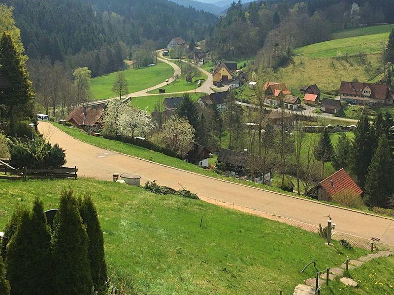 19341559-Ferienhaus-5-Alpirsbach-800x600-21