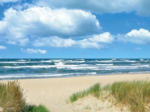 21864603-Ferienhaus-4-Baabe-300x225-14