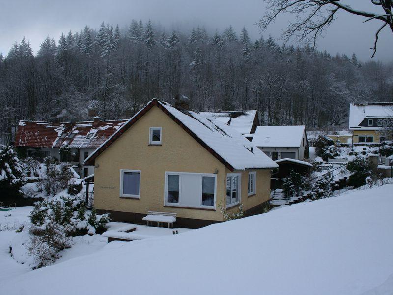 21987959-Ferienhaus-11-Bad Lauterberg-800x600-1