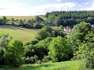 19341126-Ferienhaus-8-Balesfeld-300x225-28