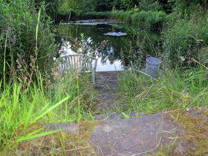 19341126-Ferienhaus-8-Balesfeld-300x225-31