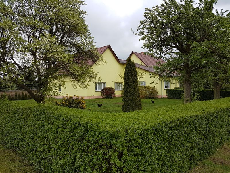 19380362-Ferienhaus-6-Casekow-800x600-18