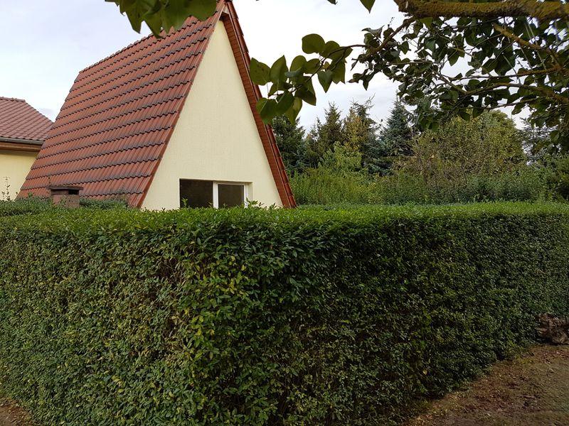 19380362-Ferienhaus-6-Casekow-800x600-16