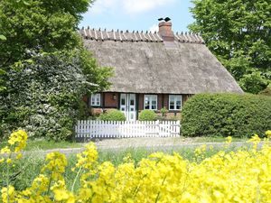 Ferienhaus für 5 Personen (90 m²) ab 65 € in Esgrus