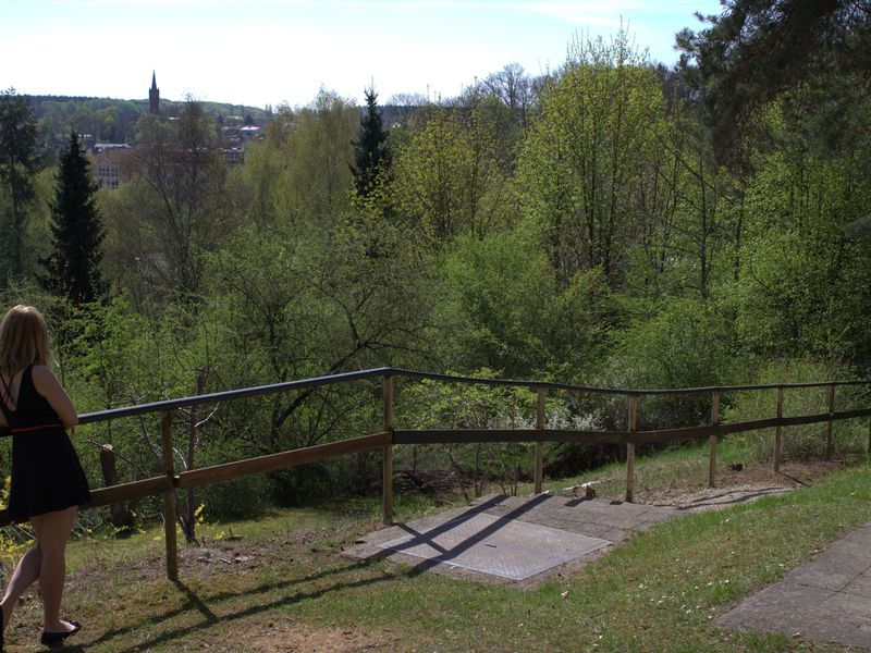 19273685-Ferienhaus-6-Feldberger Seenlandschaft-800x600-6