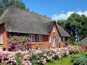 Ferienhaus für 5 Personen (165 m²) ab 75 € in Garding
