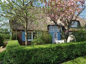 Ferienhaus für 6 Personen (110 m²) ab 135 € in Garding
