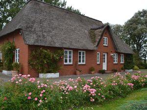 Ferienhaus für 5 Personen (165 m²) ab 105 € in Garding