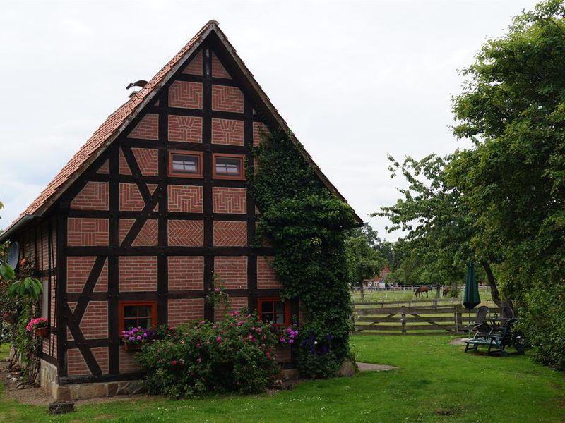 18658930-Ferienhaus-4-Gilten-800x600-4