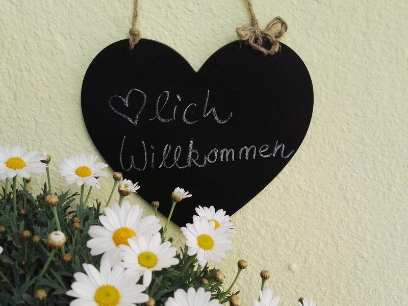 21988889-Ferienhaus-6-Gunzenhausen-800x600-1