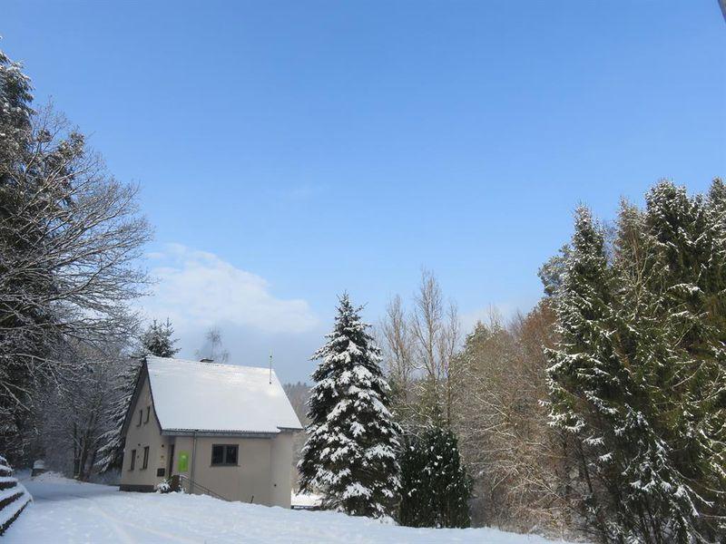 18980921-Ferienhaus-7-Horbach-800x600-24