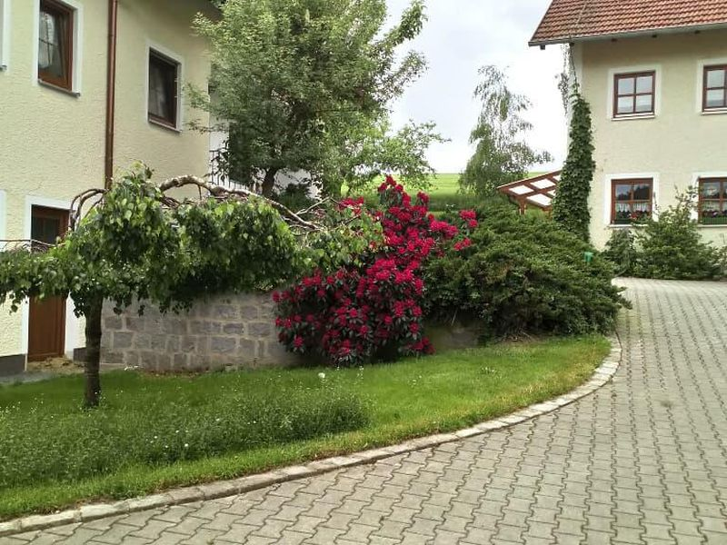 1659109-Ferienhaus-6-Michelsneukirchen-800x600-2