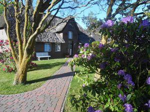 Ferienhaus für 3 Personen (72 m²) ab 80 € in Morsum (Sylt)