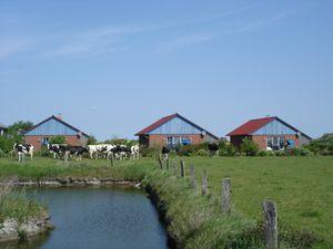 Ferienhaus für 5 Personen (64 m²) ab 85 € in Pellworm