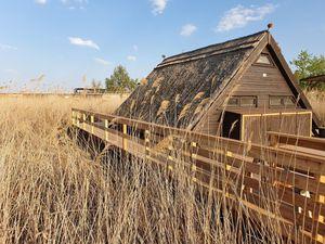 Ferienhaus für 6 Personen (35 m²) ab 155 € in Rust (Burgenland)