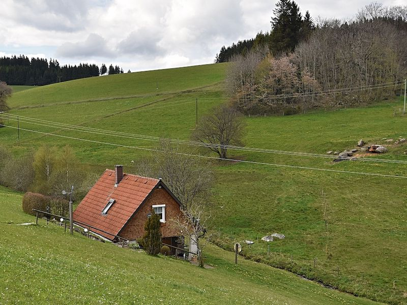 19341611-Ferienhaus-2-Sankt Georgen im Schwarzwald-800x600-2