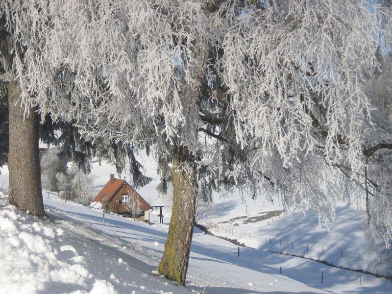 19341611-Ferienhaus-2-Sankt Georgen im Schwarzwald-800x600-3