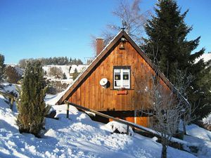 19341611-Ferienhaus-2-Sankt Georgen im Schwarzwald-300x225-4