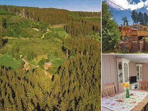 Ferienhaus für 2 Personen (40 m²) in Seffern