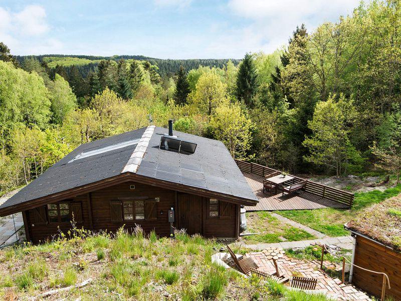 22490233-Ferienhaus-6-Silkeborg-800x600-0