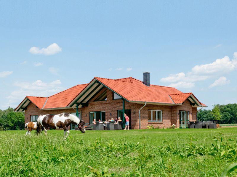 22119031-Ferienhaus-8-Soltau-800x600-0