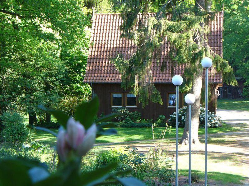 18619887-Ferienhaus-4-Soltau-800x600-4