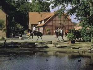 18612479-Ferienhaus-5-Soltau-300x225-0