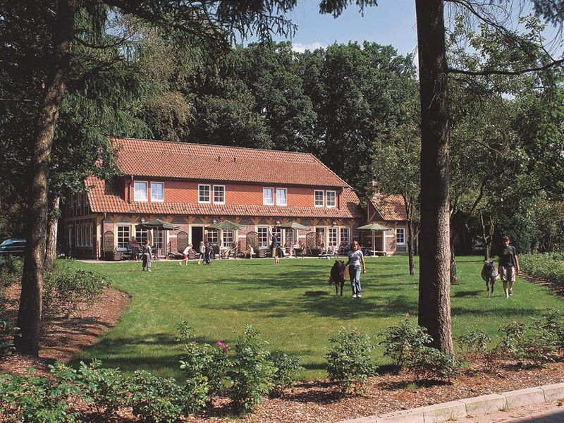 18629205-Ferienhaus-5-Soltau-800x600-5