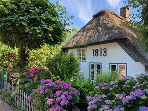 Ferienhaus für 5 Personen (75 m²) ab 110 € in Süderdeich