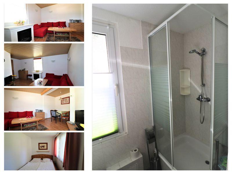 22651249-Ferienhaus-6-Tanna-800x600-1