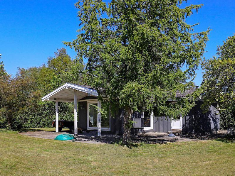 22466707-Ferienhaus-8-Tranekær-800x600-0
