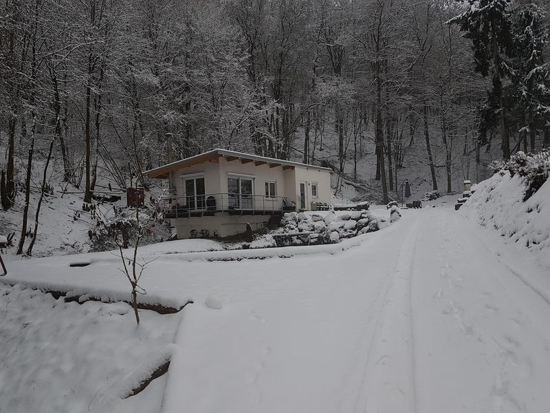 22810125-Ferienhaus-2-Ulmet-800x600-0
