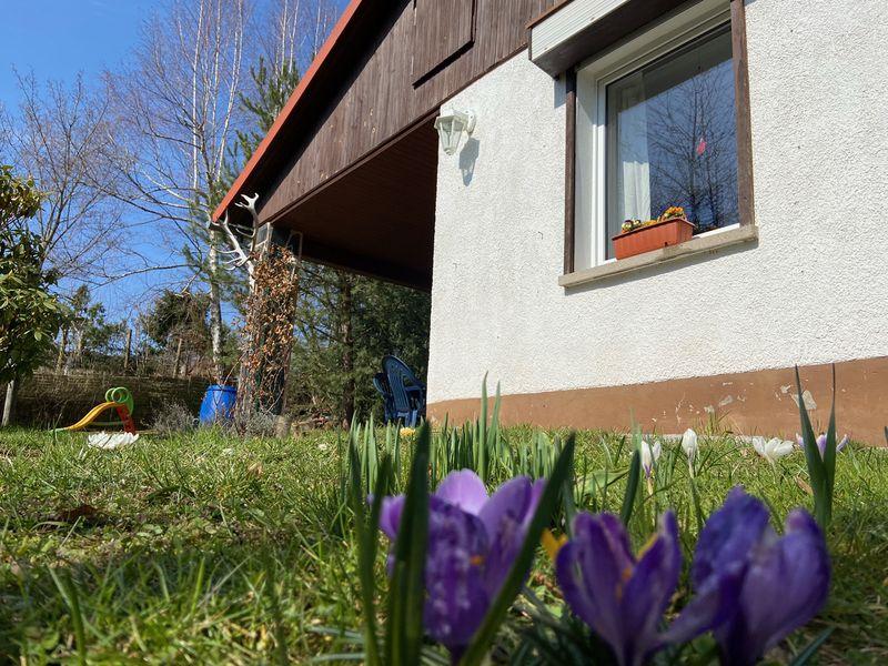 7060016-Ferienhaus-3-Waltershausen-800x600-2