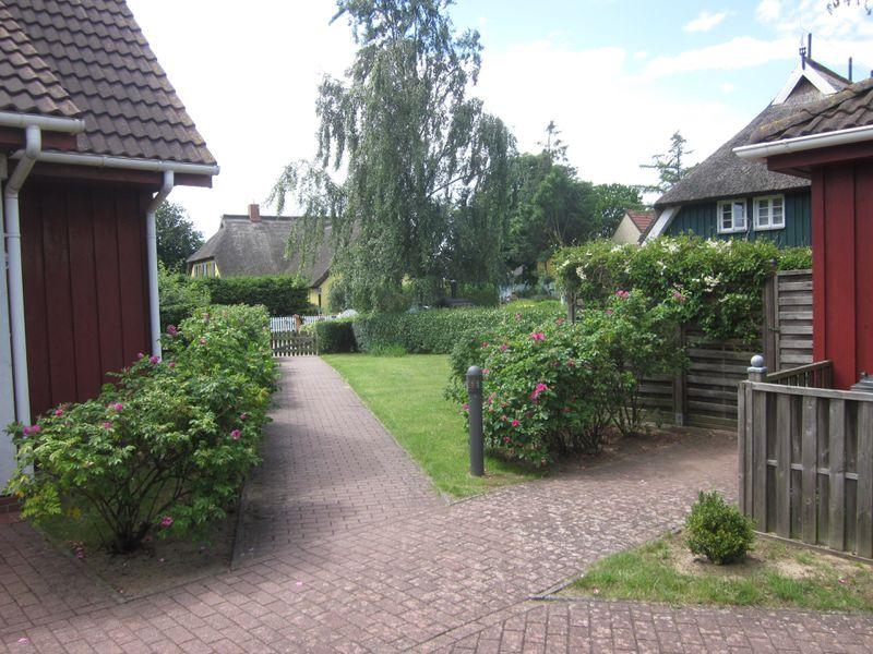 21669931-Ferienhaus-4-Wieck am Darß-800x600-9