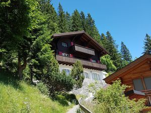 18984190-Ferienwohnung-5-Adelboden-300x225-5