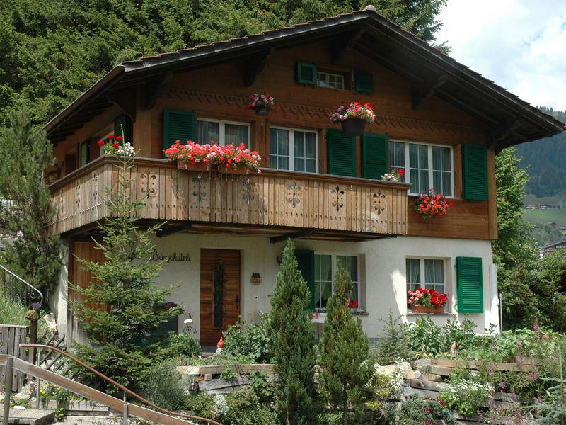18984260-Ferienwohnung-4-Adelboden-800x600-0