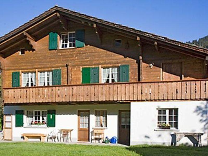 18984206-Ferienwohnung-8-Adelboden-800x600-1