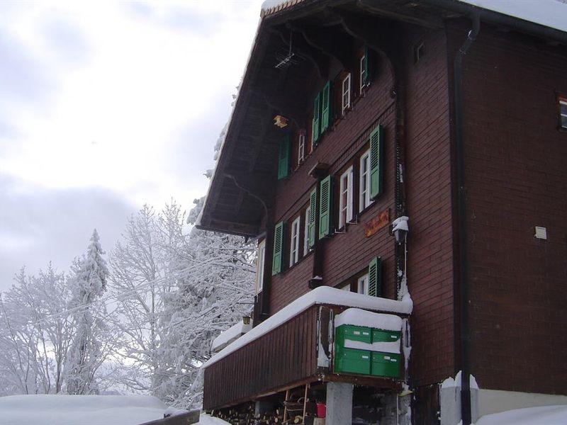 18984177-Ferienwohnung-4-Adelboden-800x600-1