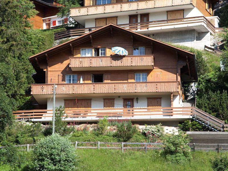 18984159-Ferienwohnung-4-Adelboden-800x600-1