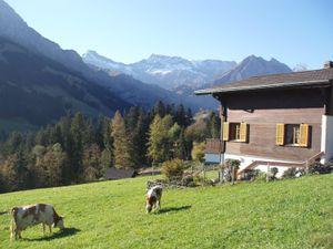 18984105-Ferienwohnung-4-Adelboden-300x225-3