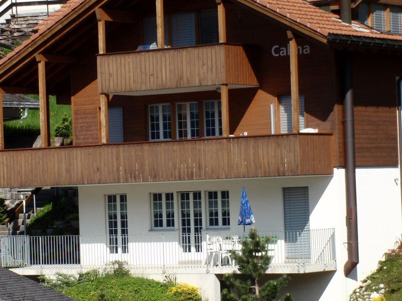 18984273-Ferienwohnung-5-Adelboden-800x600-1