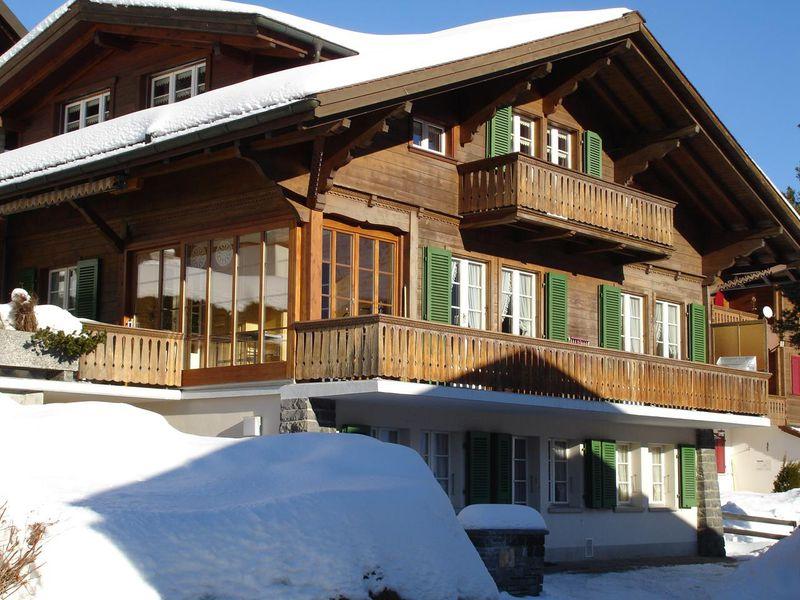 18984106-Ferienwohnung-6-Adelboden-800x600-2