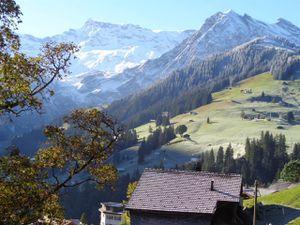 18984159-Ferienwohnung-4-Adelboden-300x225-4