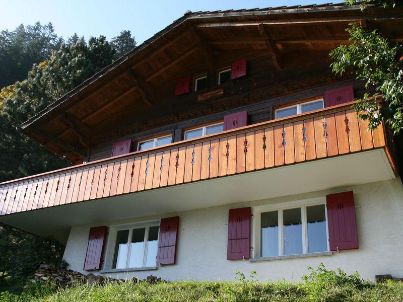 18984148-Ferienwohnung-6-Adelboden-800x600-0