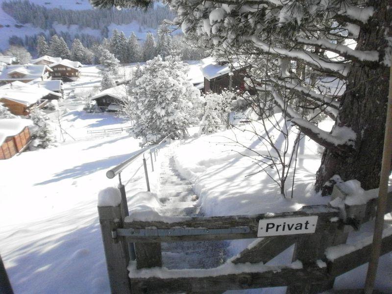 18984148-Ferienwohnung-6-Adelboden-800x600-5