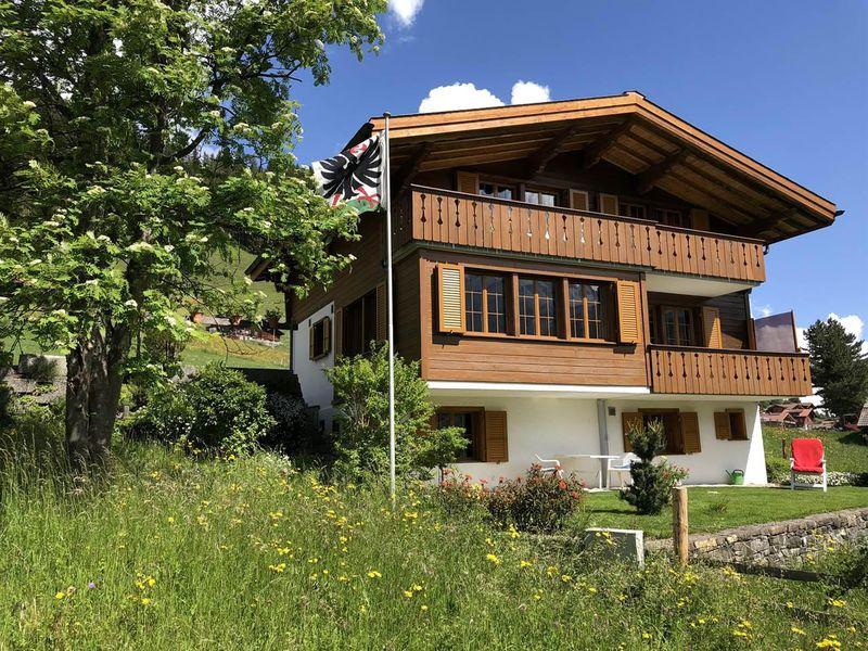 18984105-Ferienwohnung-4-Adelboden-800x600-0