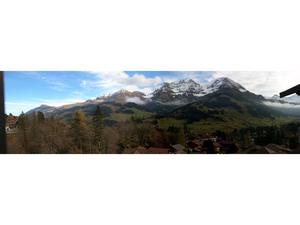 21606193-Ferienwohnung-5-Adelboden-300x225-13