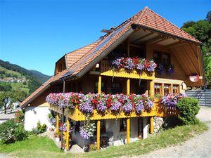 Ferienwohnung für 3 Personen (45 m²) ab 55 € in Aitern