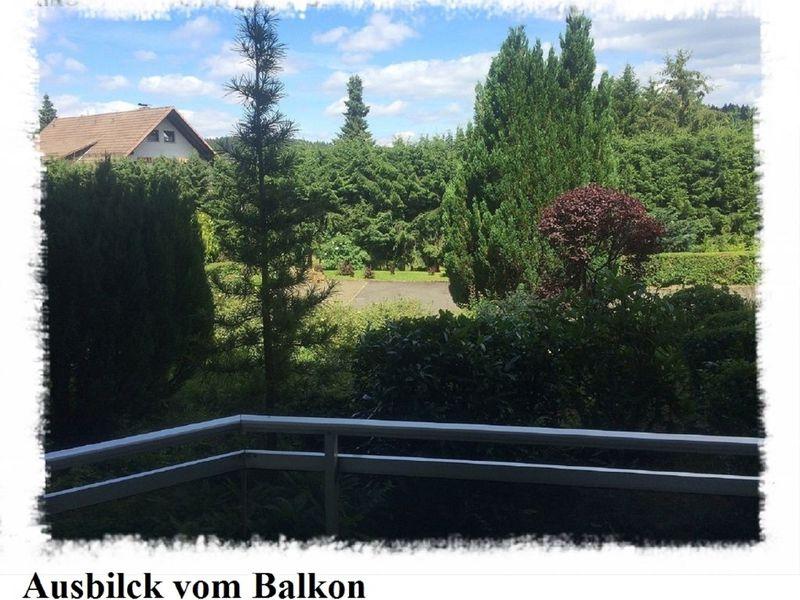 21603875-Ferienwohnung-5-Altenau-800x600-11